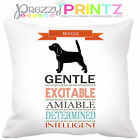 🐾 PERSONALISED DOG BREED BEAGLE HISTORY CUSHION PET GIFT CHRISTMAS BIRTHDAY 🐾
