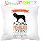 🐾PERSONALISED DOG BREED CAVALIER HISTORY CUSHION PET GIFT CHRISTMAS BIRTHDAY 🐾