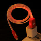 Micro USB Cable w/ Twinkling Neon Lights