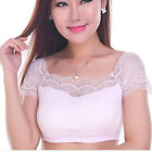 Women's Sexy Lace Stretch Short Sleeve Tube TOP Plain Bandeau Underwear T shirt