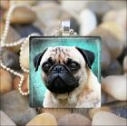 """PUG DOG CUTIE"" PUG LOVE GLASS TILE PENDANT NECKLACE KEYRING - Blue/Green Design"