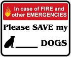 In Case of Fire Save My Dogs Decals / Stickers