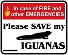 In Case of Fire Save My Iguanas Decals / Stickers