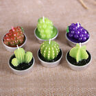 6X Cactus Plant Grape Candles Party Birthday Wedding Decorations Dinner Candle L