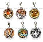 Lions Tigers & Big Cats Glass Top 20mm Clip On Charm Pendant Pick 1