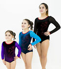 girls gymnastics star and hearts with mesh sleeves leotard