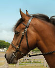 Windsor Leather In Hand Bridle Brass Buckles Fancy Stitch Detail on Noseband
