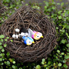 Внешний вид - 1x Cute Micro Landscape Garden Decor Miniature Fairy Garden Little Bird/Egg/Nest