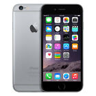Apple iPhone 6-Gray-16/64/128GB iPhone 5C-White-8G (Factory Unlocked) Smartphone