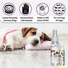 JACK RUSSELL TERRIER RELAX THE BLISSFUL DOG AROMATHERAPY STRESS ANXIETY FEAR