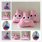 Super Cute Smiling Rainbow Emoji Keyring Keychain Poo Shape