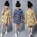 Cute Toddler Kid Girl Long Sleeve Floral Dress Casual Party Dresses Clothes 2-7Y