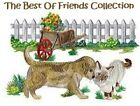 THE BEST OF FRIENDS COLLECTION - MACHINE EMBROIDERY DESIGNS ON CD