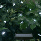 Auto-On Outdoor Solar Power Accent Garden String Lights 30-Count