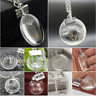 Crystal Ball Real Dandelion Seed Wishing Wish Necklace Long Silver Chain Fashion
