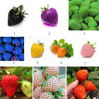 100 PCS Strawberry Seeds Nutritious Delicious Fruit Vegetables Seed Multicolor