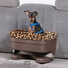 Pet Gear Elevated Raised Bucket Booster Car Seat in Brown Med/Large Sizes
