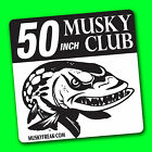 "MUSKY CLUB DECAL for Tackle Box, Car, Boat, 50-40-30-24"" Big fish Sticker DECALS"