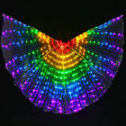 Large Colored Belly Dance LED Wings Butterfly Costume Oriental Dancing Accessory