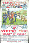 Vintage Sussex Territorial Army Recruitment Poster A3/A4 Print