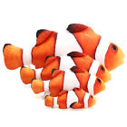 Interactive Pet Cat Play Fish Shape Mint Catnip Chewing Scratch Toy Gifts XXF