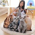 3D Simulation Cat Pillow Cute Cat Doll Cushion Throw Pillow Plush Toy Gift New