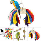 Funny Parrot Swing Bird Toy Rope Harness Cage Toys Parakeet Cockatiel Budgie NEW