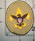 BOY SCOUT OF AMERICA KHAKI COLOR RANK PATCH USED (B51)