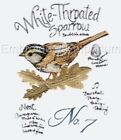 BIRD STUDY COLLECTION - MACHINE EMBROIDERY DESIGNS ON CD
