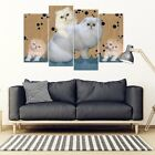 Persian Cat2 Print-5 Piece Framed Canvas- Free Shipping