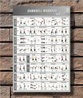C-51 BodyBuilding Fitness Dumbbell Workout Vol.1 Gym Chart Print Poster 21 24x36