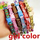 StoreInventorypets colorful basic collar adjustable outdoor safety comfortable accessories new