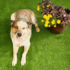 IncStores Pet Turf - Draining Dog Potty Pad and Grass Patch