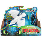 How To Train Your Dragon The Hidden World Dragon and Viking Choice of Dragon