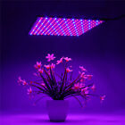 1500W 225LED Grow Light UV Growing  Indoor Veg Plants Hydroponic Plant . Buy it now for 21.32