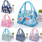 Cute Lunch Bag For Women Portable Food Box Insulated Thermal Picnic Bags