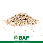 BAF Sunflower Hearts Wild Bird Food For Feeders & Tables 10kg 20kg