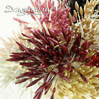 Pearl Effect Double Pointed Heads Artificial Flower Stamen Sugar Craft Millinery