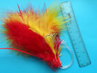 COD FEATHERS RHUBARB&CUSTARD OR RED 5 SETS 8/0 HOOKS BEST FEATHERS EVER