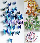 Butterfly Sticker Decal Wall Stickers Home Decor Wall Art  Romantic Party/Gift