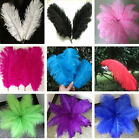 Wholesale 20pcs High Quality Natural OSTRICH FEATHERS 15-20cm Wedding hot