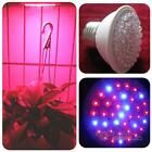 E27 110V Plant Grow Light Bulb Garden Indoor Hydroponic Lamp 38/60/80 LEDs #F8s