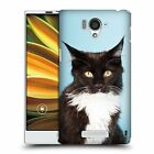 HEAD CASE DESIGNS POPULAR CAT BREEDS CASE COVER FOR SHARP AQUOS SERIE SHL25 LTE