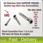 M6 A4 Stainless Steel MARINE GRADE SOCKET CAP Screws Allen Key Bolts SMALL QTY
