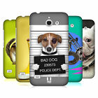 HEAD CASE DESIGNS FUNNY ANIMALS HARD BACK CASE FOR HUAWEI ASCEND Y550 LTE