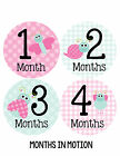Baby Girl Monthly Baby Stickers 12 Month Milestone Birthday Sticker Photo #317