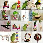 Bird Pet Parrot Swing Toys Cage Chew Bites Parakeet Cockatiel Cockatoo Budgie