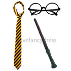 THICK STRIPE TIE ROUND GLASSES AND BRANCH WAND WIZARD FANCY DRESS COSTUME SET