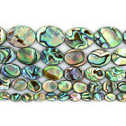 "Natural abalone shell flat oval beads strand 16"" 8mm to 20mm"