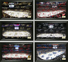 """Choose Your NHL Hockey Team 12 x 20"""" Framed 2015-2016 Signature Rink Arena Photo"""